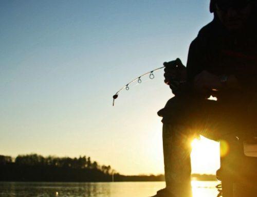 Brainerd Ice Fishing Report: December 16, 2020