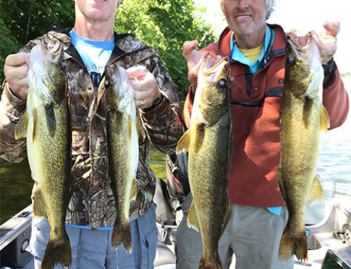 Brainerd Fishing Report: August 1, 2019