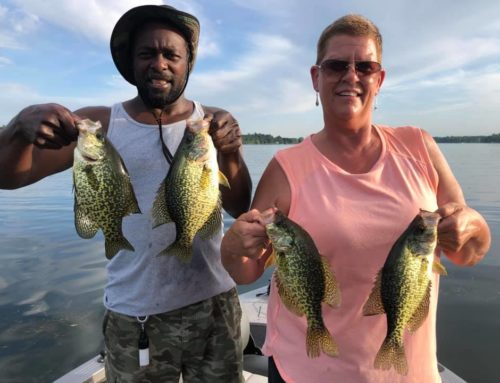 Brainerd Fishing Report: June 22, 2020